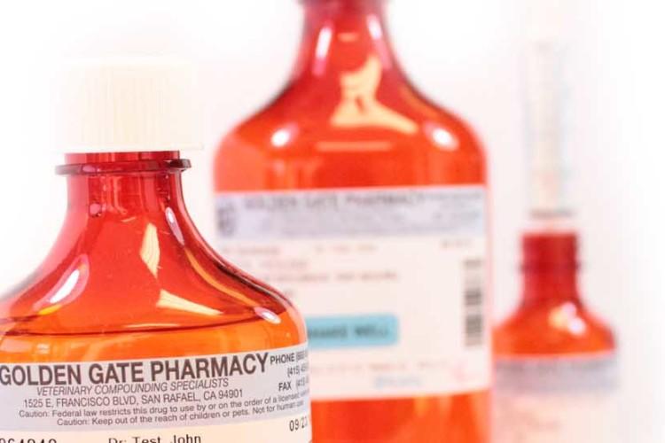 Board of Pharmacy Update