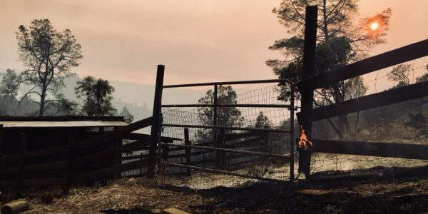 Nor Cal Fires