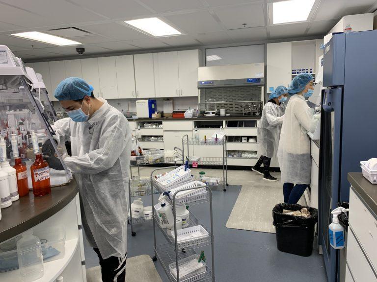 Veterinary Compounding Pharmacy