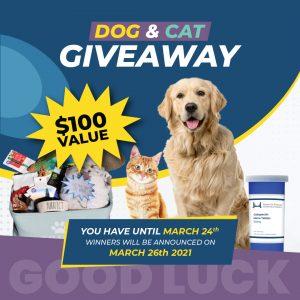 Dog & Cat Contest Graphic